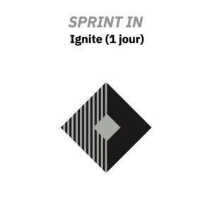 sprint ignite