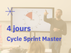 Facilitation & Sprint Master